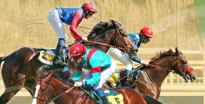 Carreras en el hipódromo de la Zarzuela (8 octubre)