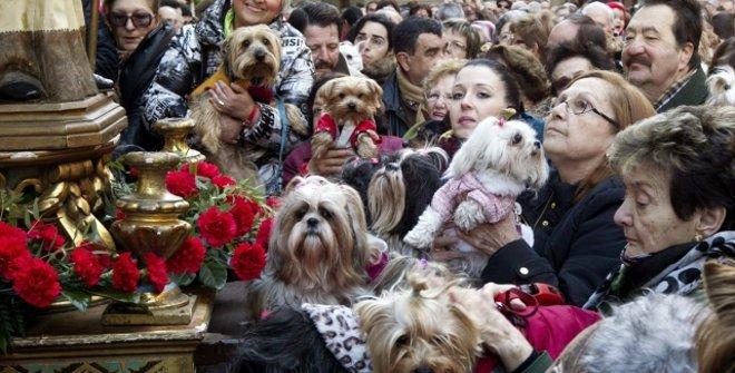 Fiestas de San Antón
