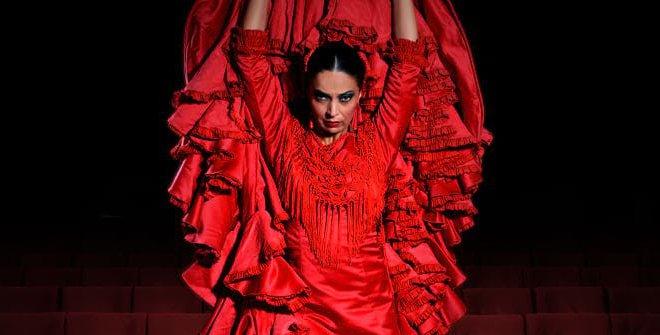 Emociones: Espectáculo Flamenco