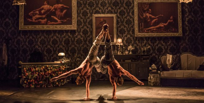 The elephant in the room - Cirque Le Roux