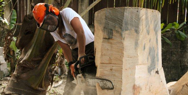 Claudia Comte, residencia TBA21–Academy. Alligator Head Foundation en Port Antonio, Jamaica. Encargo de TBA21–Academy. Fotografía: Retts Wood, 2019 | TBA21–Academy