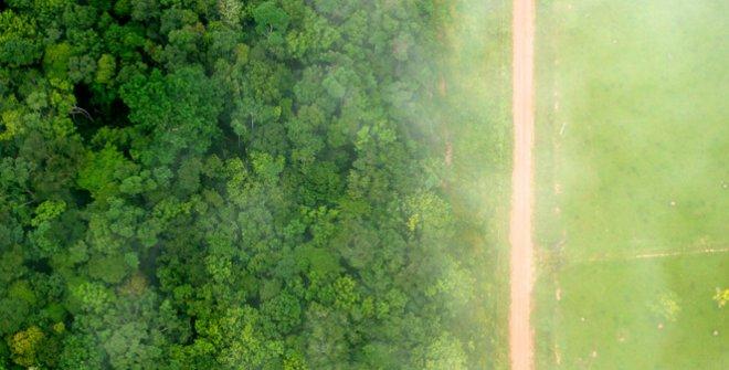 CONAMA 2020 - Congreso Nacional del Medio Ambiente