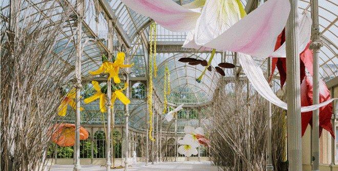 Vista de la exposición Petrit Halilaj. A un cuervo y los huracanes que, desde lugares desconocidos, traen de vuelta olores de humanos enamorados, Palacio de Cristal, 2020