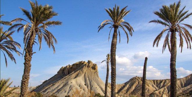 Tabernas, Almería. Luis Sáez