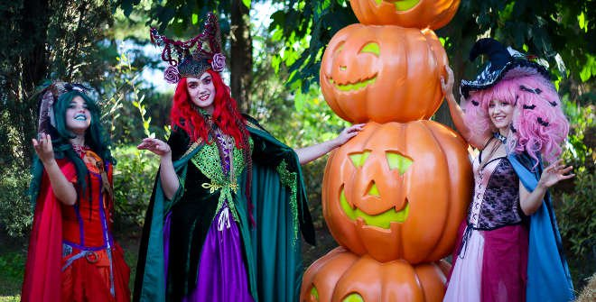 Brujas en Halloween en Parque Warner