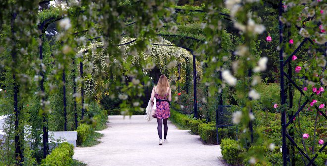 Rosaleda del Parque de El Retiro