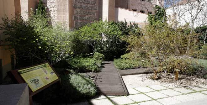 Jardín Arqueobotánico