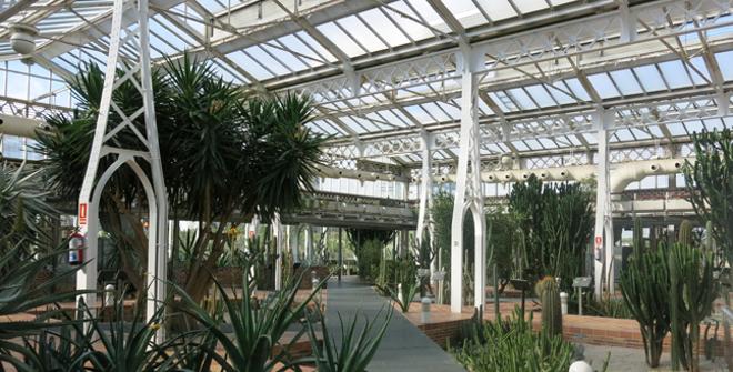 Invernadero del Palacio de Cristal de Arganzuela | Turismo Madrid