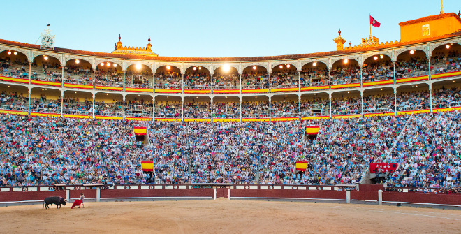 Image result for bull fighting ring pictures at night