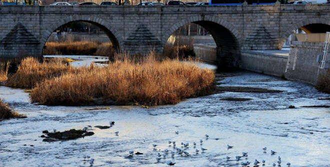 Plan renaturalización del río Manzanares