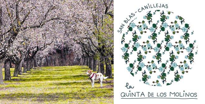 Parque Quinta de los Molinos. Distrito Canillejas