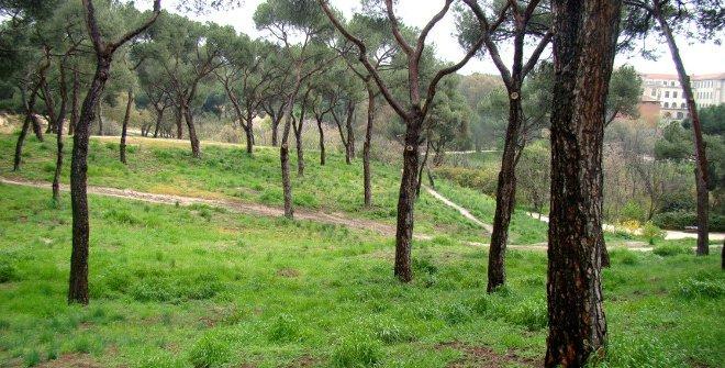 Parque Dehesa de la Villa