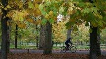 Ciclista en la Ruta Verde de la Casa de Campo