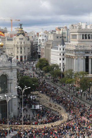 Fiesta de la Trashumancia Madrid 2019