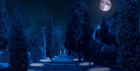 Visitas guiadas nocturnas teatralizadas al Cementerio Civil de Madrid
