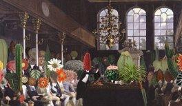 Studio Celine Baumann. Parliament of Plants