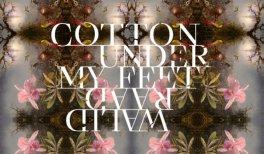 Walid Raad, Cotton under my feet
