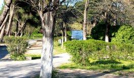 Camping Osuna