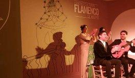Centro Cultural Flamenco de Madrid