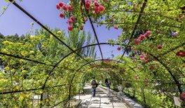 Rosaleda del Parque del Oeste.jpg