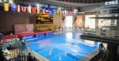 Fina Diving Grand Prix