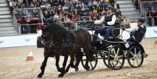 Madrid Horse Week Enganche