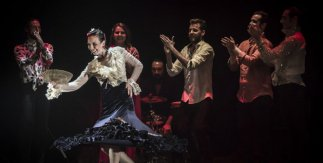 Las Minas Flamenco Tour