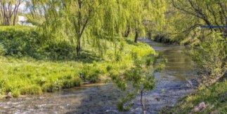 Río Manzanares a su paso por Villaverde