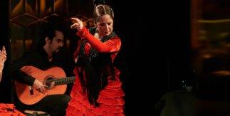 Noches de Flamenco Larios Café