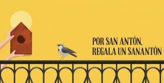 Fiestas de San Antón 2019