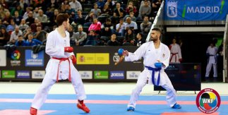 Karate Premier League Madrid