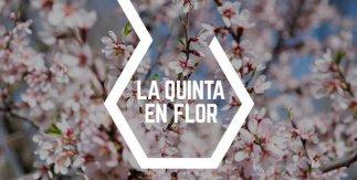 La Quinta en flor