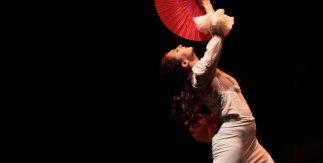 María José Franco. Flamenco Real