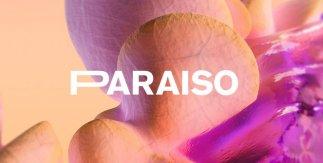 Festival Paraíso 2020