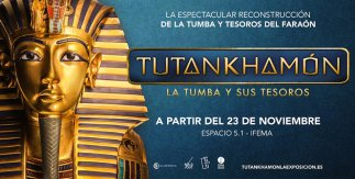 Tutankhamon La Tumba y sus Tesoros
