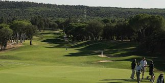 Campos De Golf En Madrid